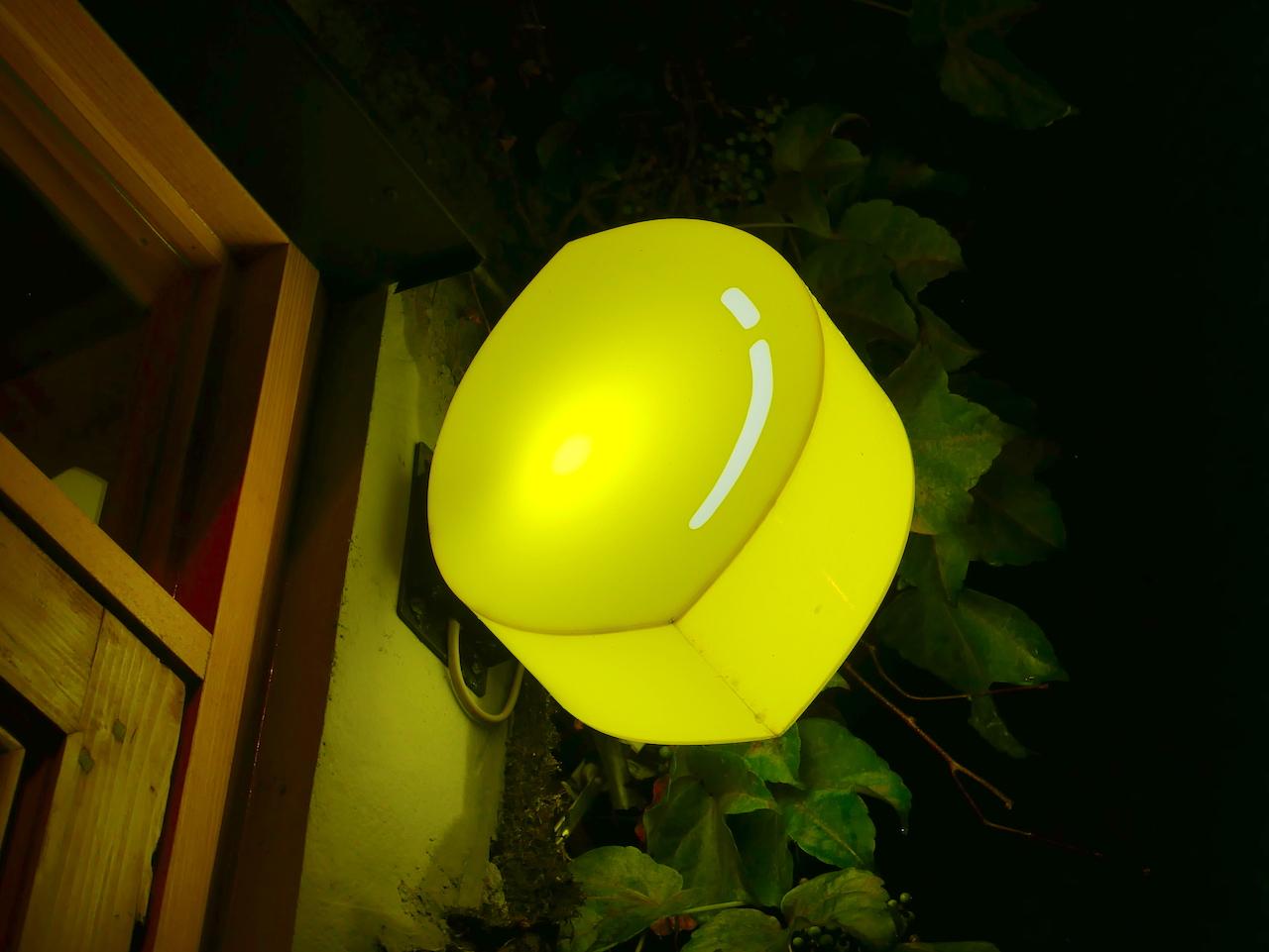 そのまんま美川のレモンサワー専門店【レモンレモン】再開のお知らせ